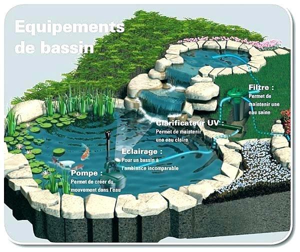 Fontaine Cascade Bassin Fontaine Pour Bassin Exterieur Fontaine