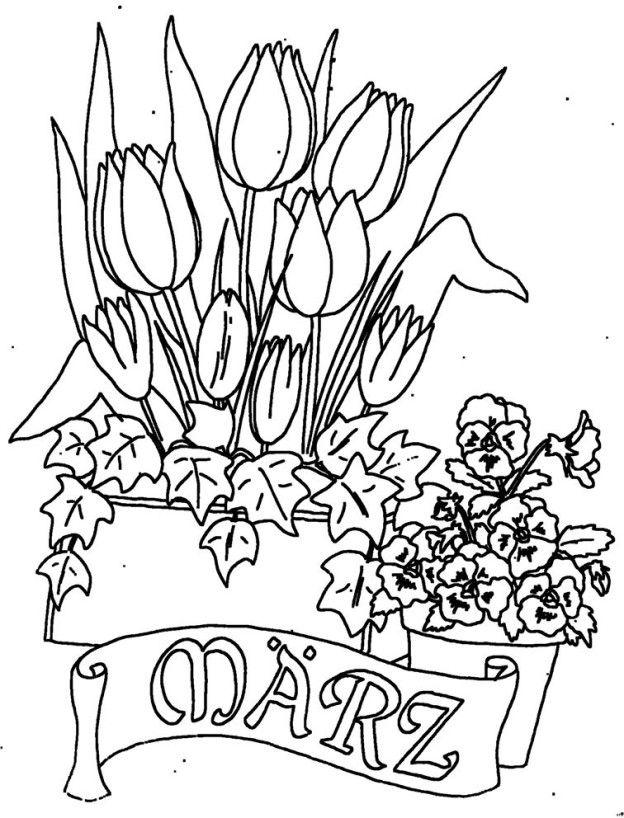 Schön Erdbeer Pflanzen Malvorlagen Ideen - Ideen färben - blsbooks.com