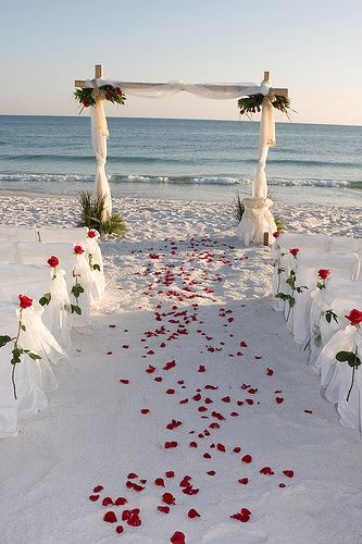 Red Rose Petals On The Sand Beach With White Chairs And Long Stemmed Roses Leading To A Wedding Arch Overlooking Blue Ocean