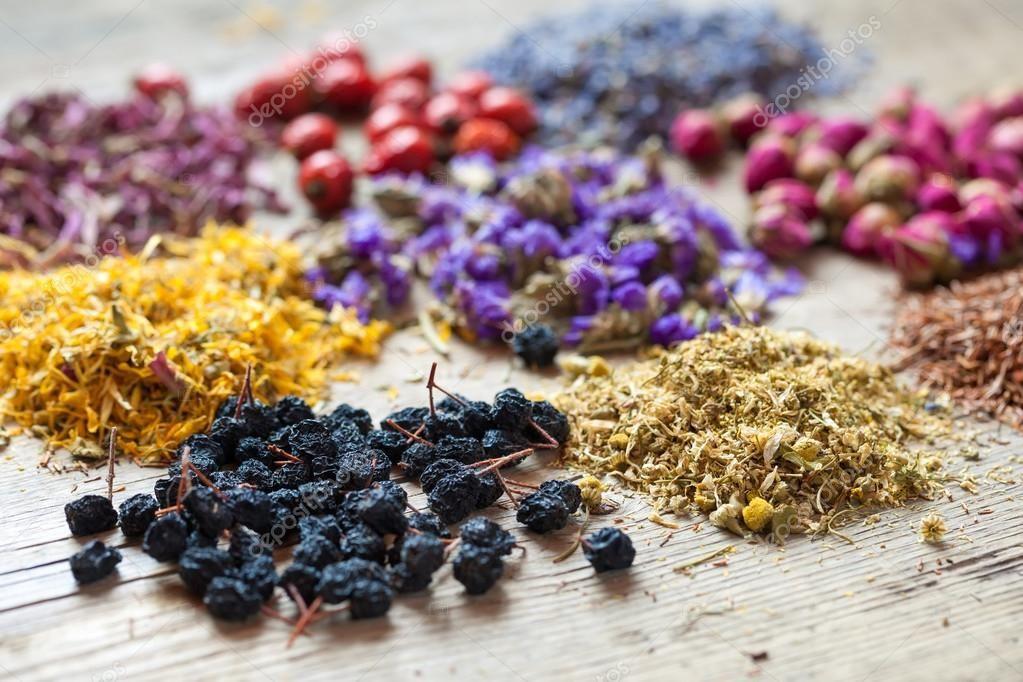 ما هي الأعشاب التي تسبب الإجهاض موسوعة Healing Herbs Medicinal Herbs Herbs