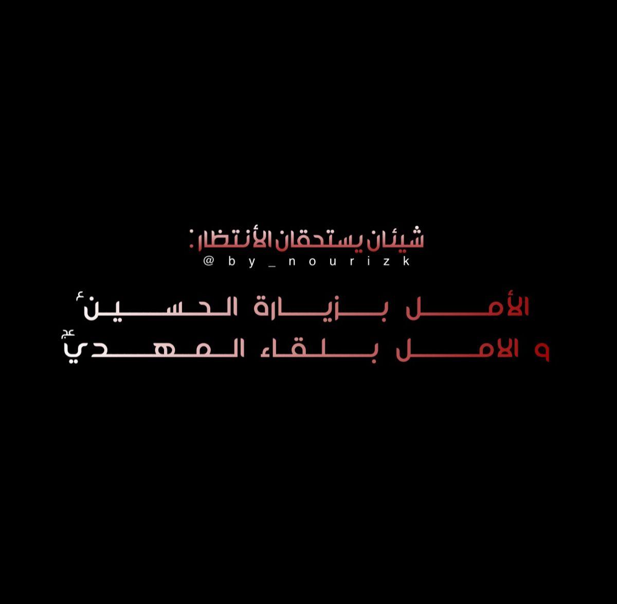 زيارة الح سين ع و لقاء المهدي عج