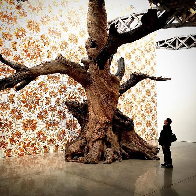#AiWeiWei #Roots and #Branches with #surveillance #camera #wallpaper - Capital A #Artist