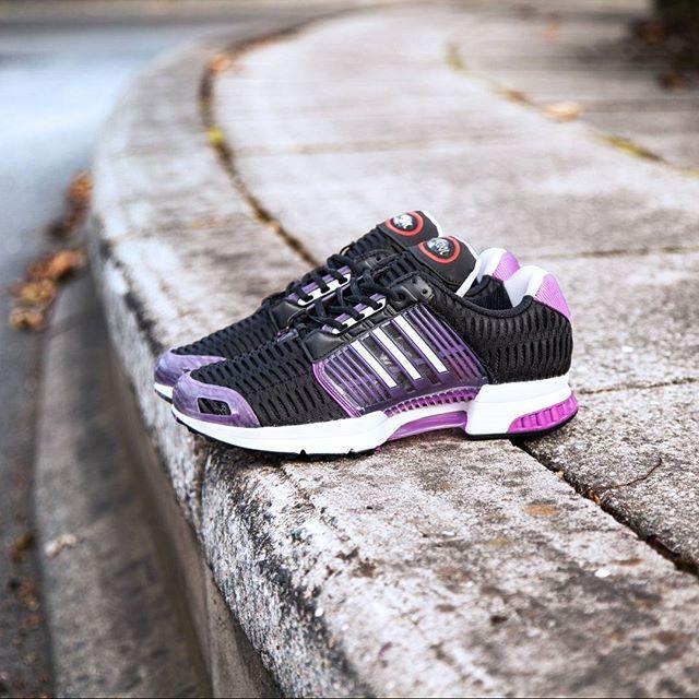 adidas climacool 1 purple shock