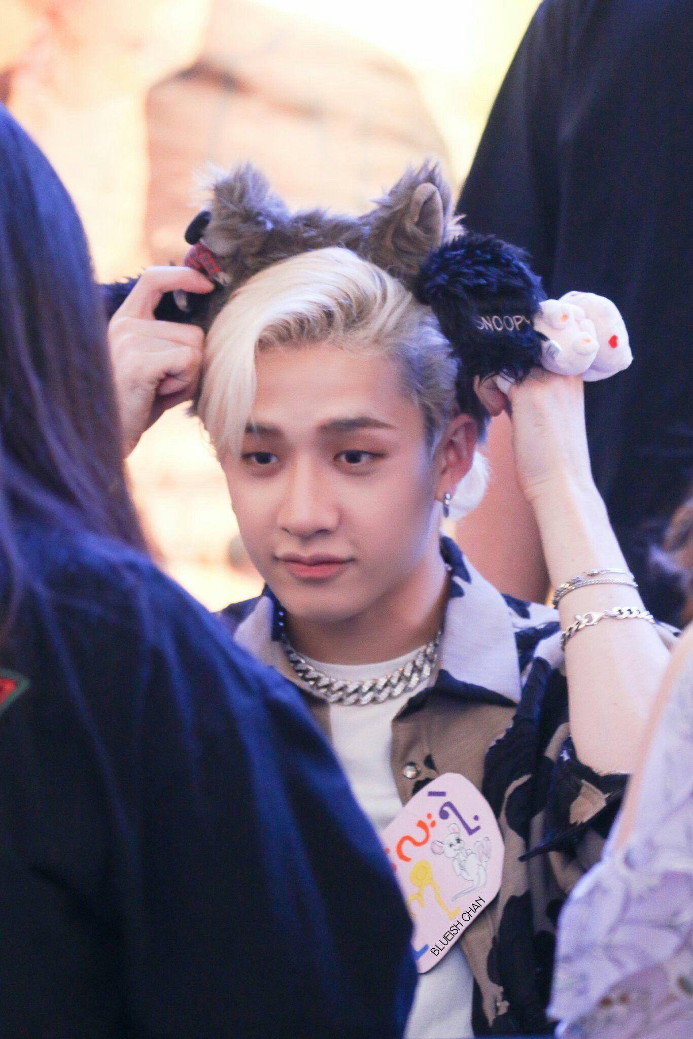ーstrαykιdѕ image by SKZ Pics Bangs, Korean idol, Stray