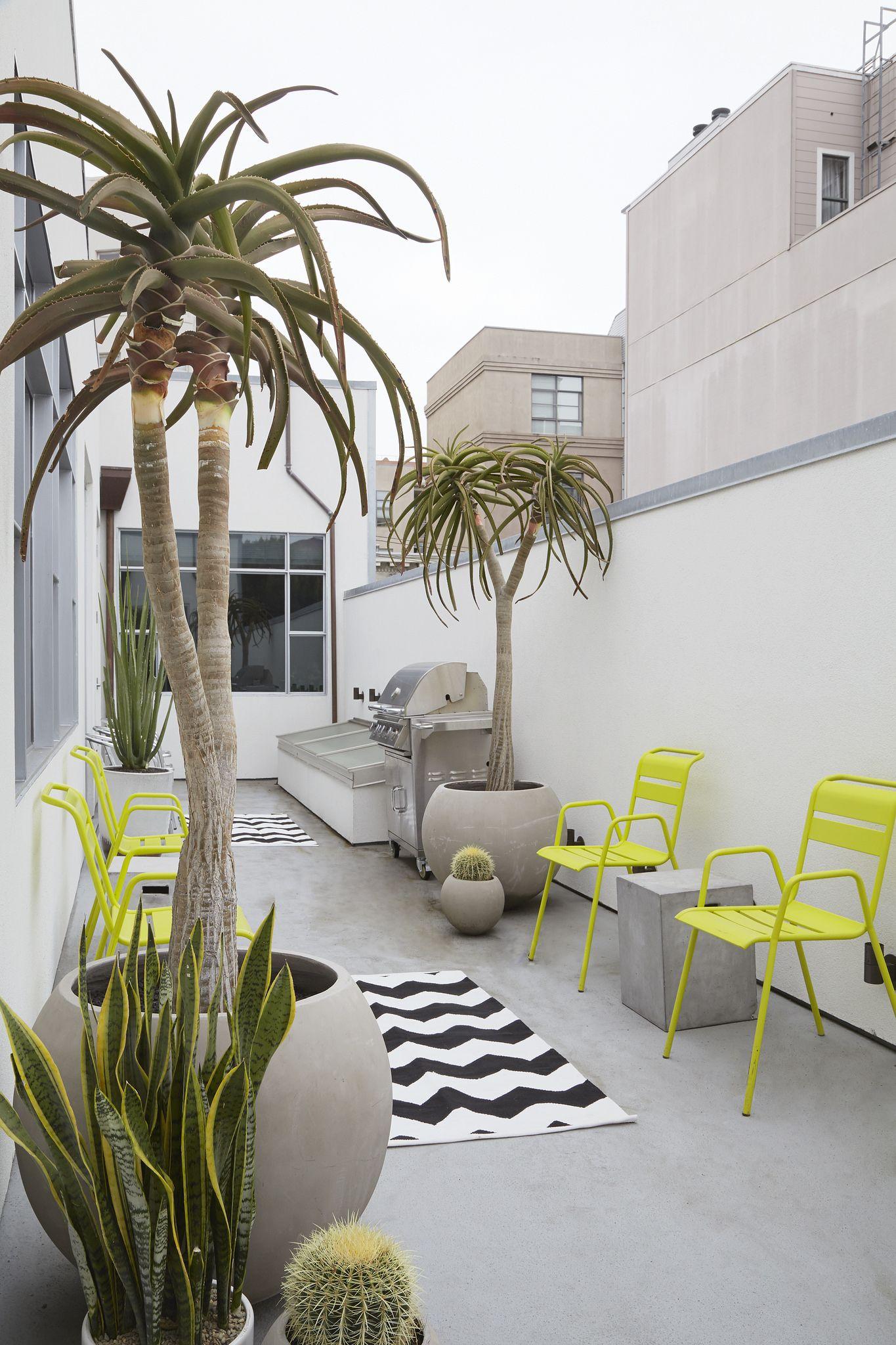 15244049731_571f4d50a7_k | Modern Garden | Pinterest