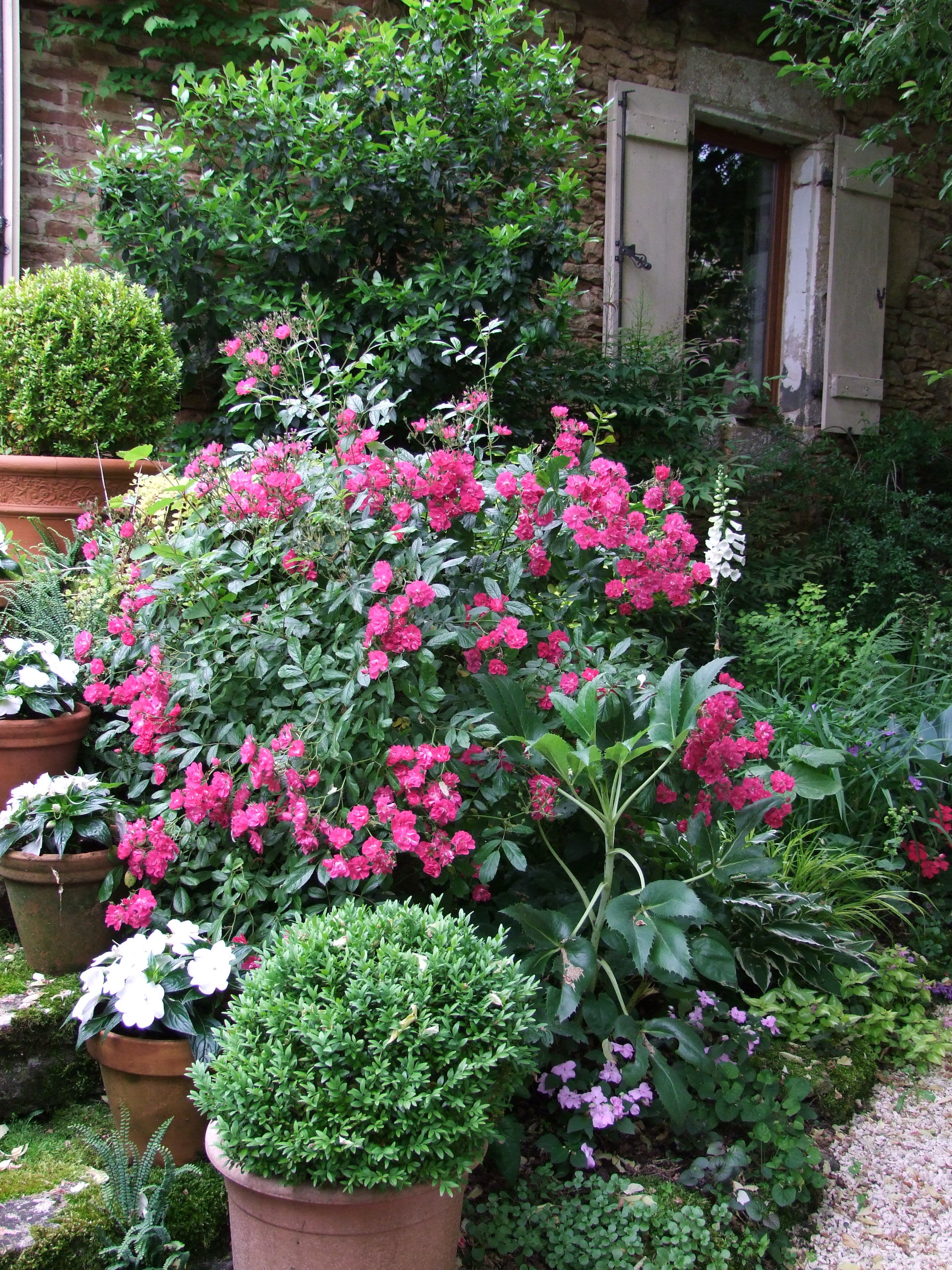 check great landscaping