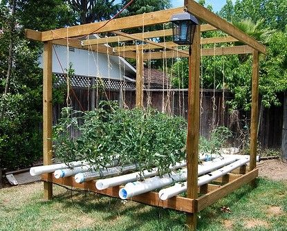 Hydroponic Gardenuses less space since roots dont have to