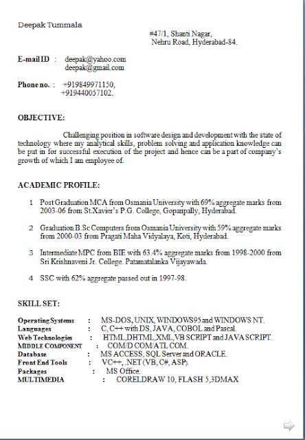 curriculum vitae plural free download sample template excellent