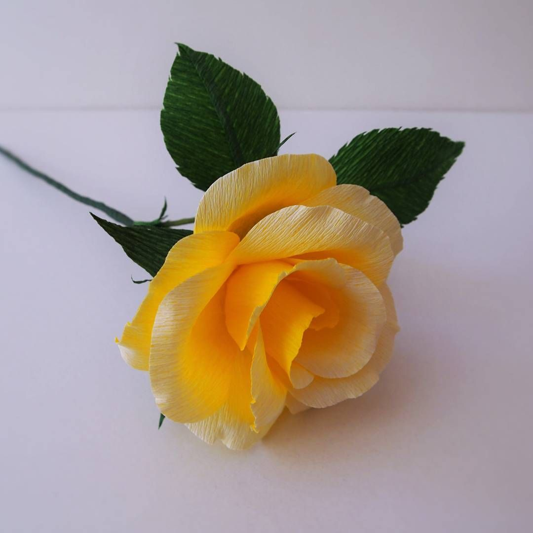 Exquisite lifelike doublette crepe paper roses by amelius lovely
