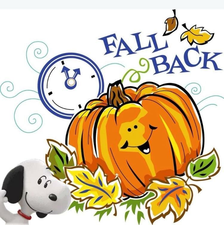 It S The Day That Evenings Disappear 11 4 2018 Spring Forward Fall Back Fall Back Time Fall Back