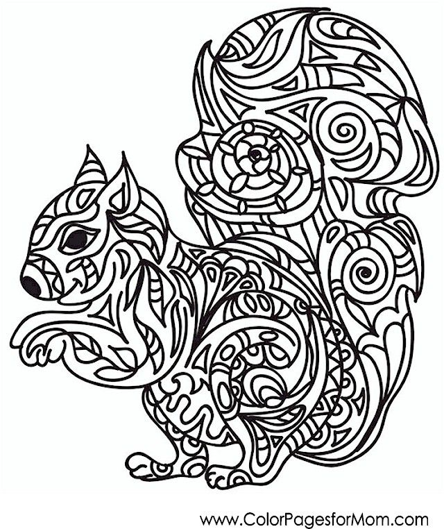 animals 37 advanced coloring pages - Advanced Coloring Pages Animals