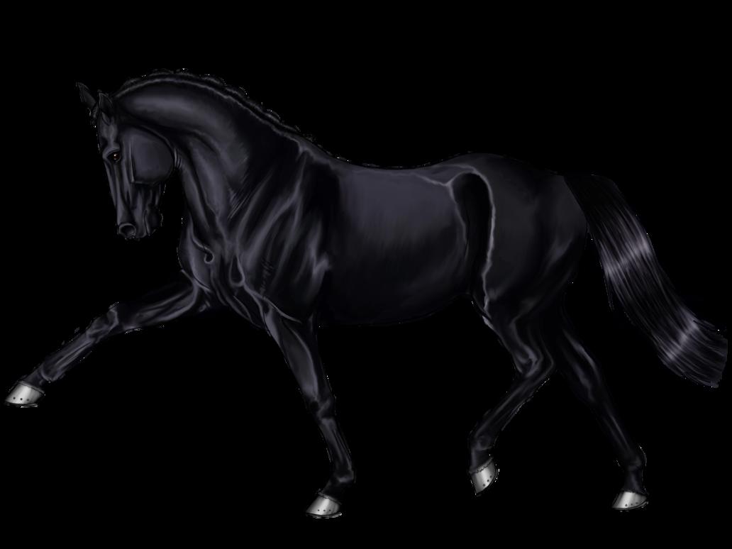 Black Horse By Wideturn Deviantart Com On Deviantart Horses Black Horse Black