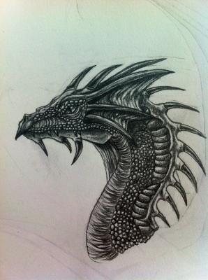 Dragon drawing tattoo possibilities pinterest dragons dragon drawing ccuart Choice Image