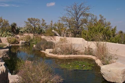 7da262deb30b99e7152d7fb1033b229b - Living Desert Zoo And Gardens State Park New Mexico