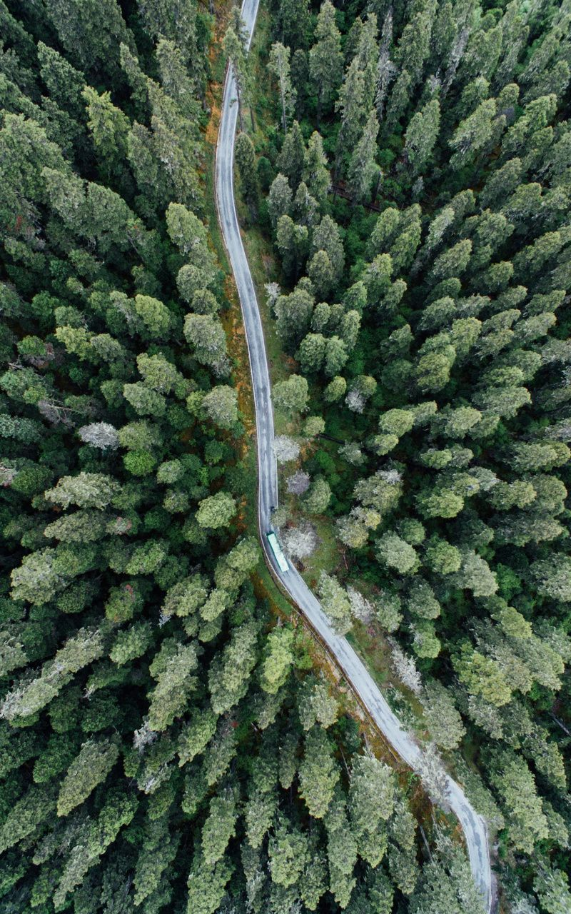 800x1280 Aerial Shot Road Through Forest Tree Nature Wallpaper Aerial Shot Drone Photography Aerial Photography