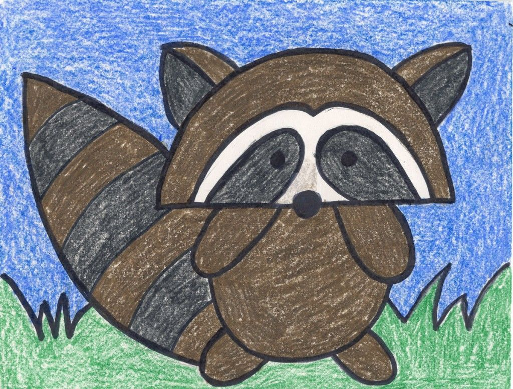 draw a simple raccoon art projects for kids