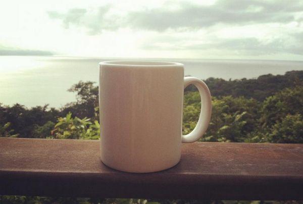 Killer Morning View: Lapa Rios Ecolodge    HotelChatter
