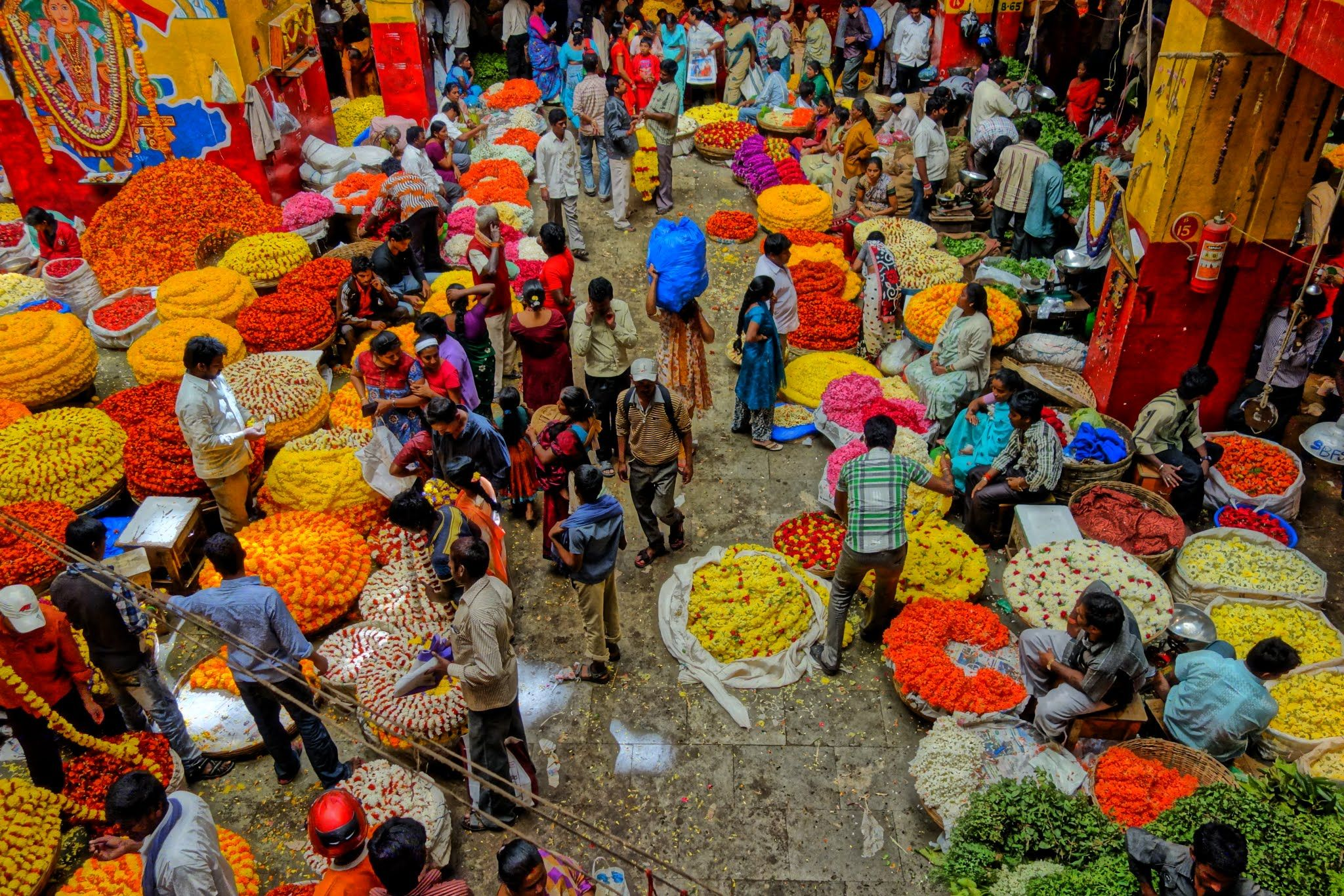 markets in india Pages in category wholesale markets in india the following 13 pages are in  this category, out of 13 total this list may not reflect recent changes (learn more.