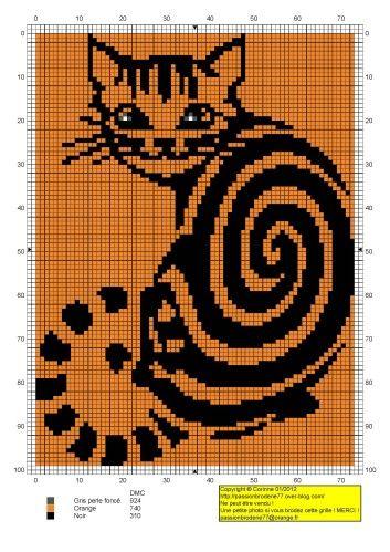 cat-orange.jpg