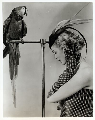 summer collection of 1954.    The photograph, depicting a model wearing a feathered cocktail hat and posed with a parrot, is titled Birds of a feather.