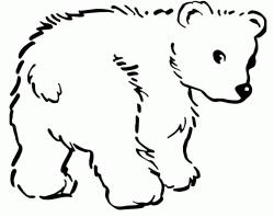 Orsetto Animali Idee Per Disegnare Cuccioli Della Fattoria