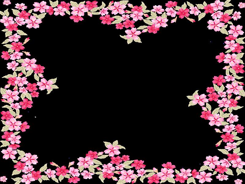 Flores Blancas Png 800 600: Aadad-flores2b73.png (800×600)