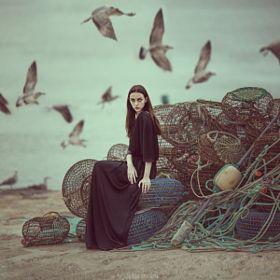 Nets and Seagulls- - Anka Zhuravleva