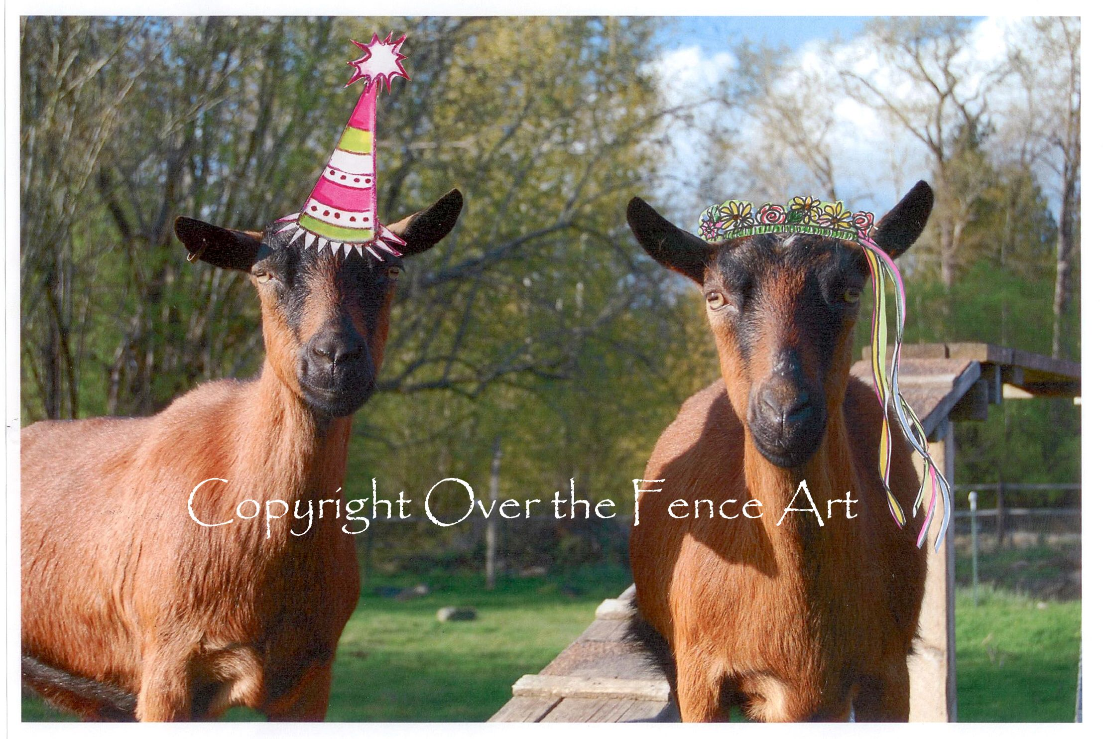 Celebrate With The Goat Ie Girls A Handcrafted Greeting Card