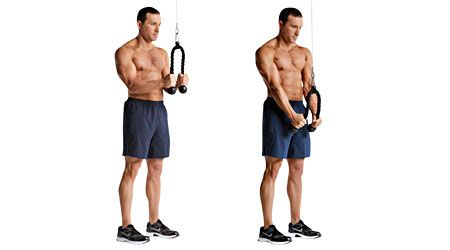 Image result for Cable Tricep Extensions