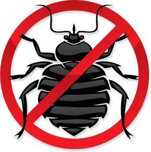 Prepare For Bedbug Removal In Simivalley Aactionpc Pestcontrol Aactionpestcontrol Pest Control Bed Bugs Termite Control Pest Control Services