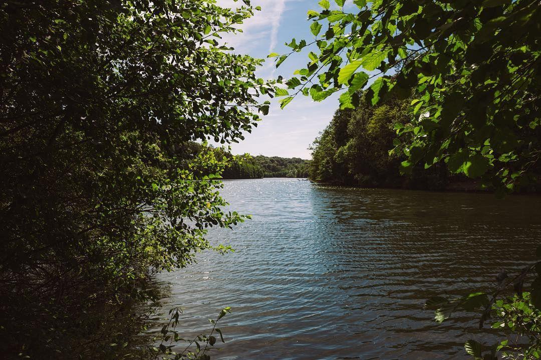Home. #sqy #yvelinestourisme #yvelines #laminiere #etang #nature #landscape #wandering #igersfrance #france #leicaq #madeinwetzlar #leicacamera