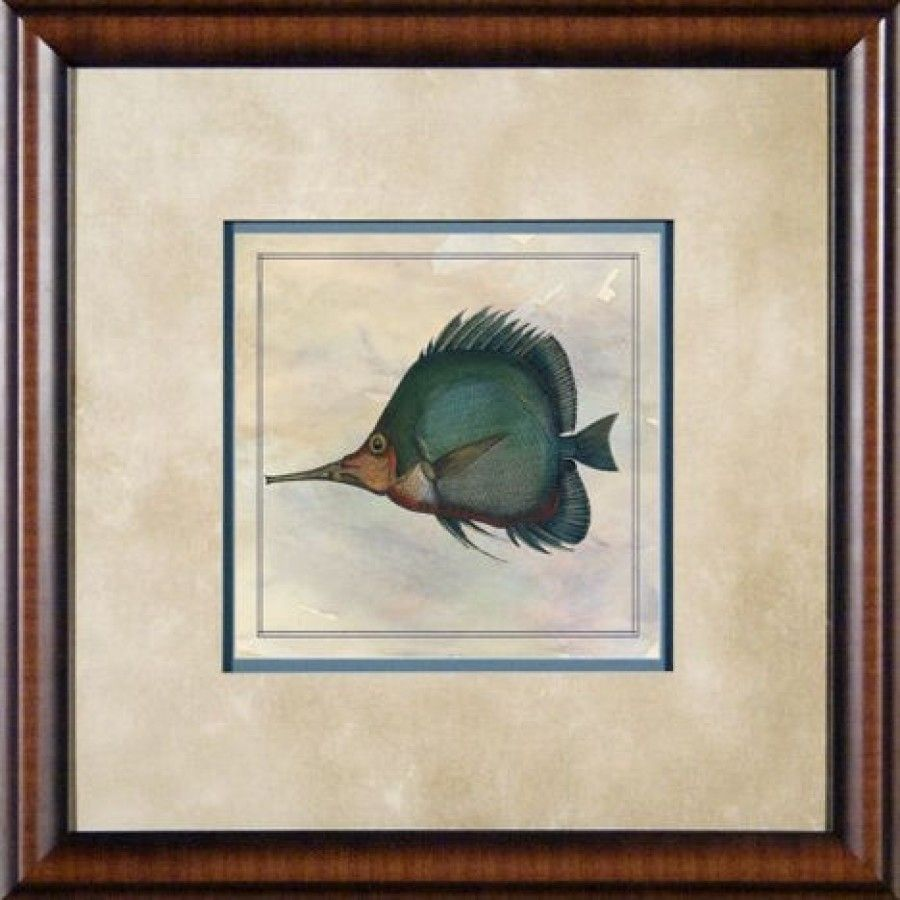 Phoenix Galleries Tropical Fish 4 Framed Print - 21\