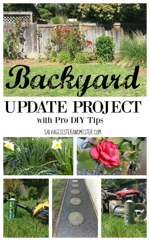 Project Backyard Update Backyard Diy Backyard