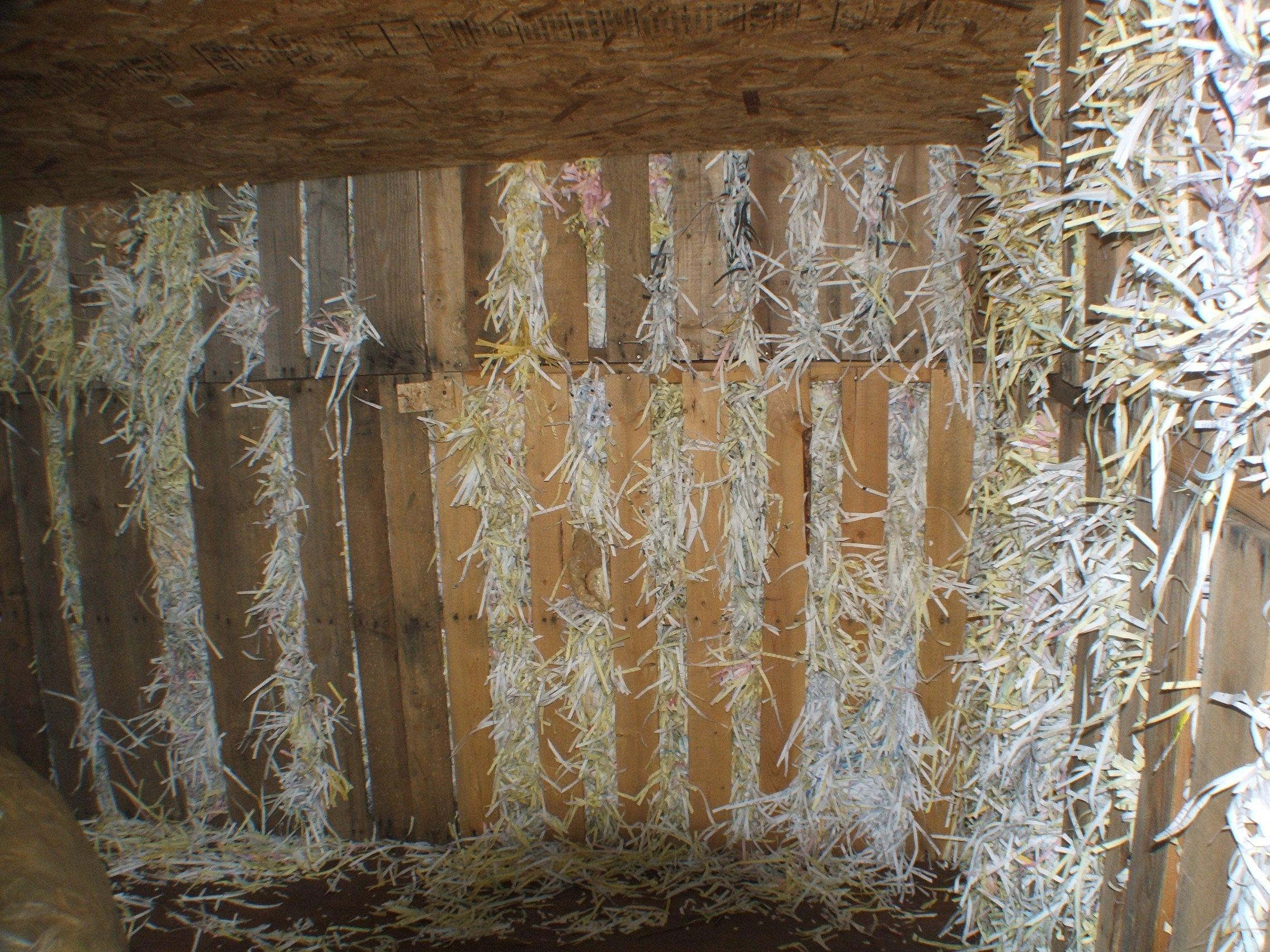 shredded paper insulation