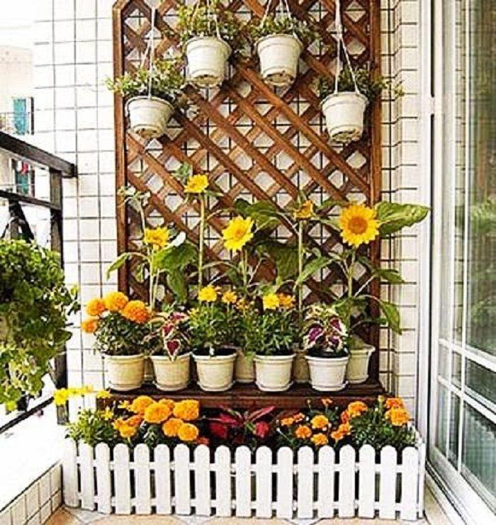 чтобы взялся, цветы на балконе дизайн фото одна молодая