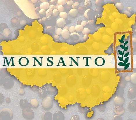 China's Ministry of Agriculture Accused of Colluding with Monsanto Over Glyphosate & GMOs