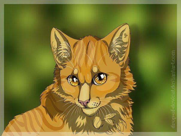 Коты воители львинолап