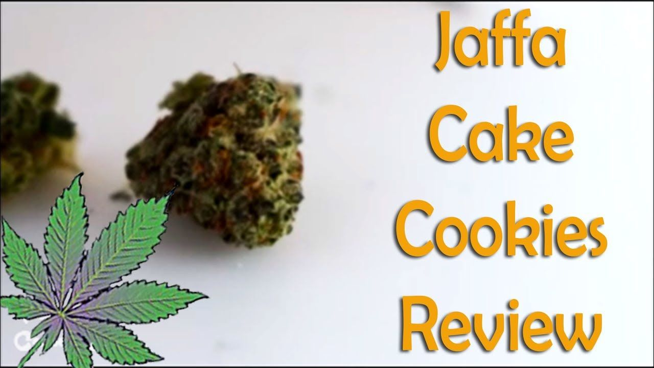 Jaffa Cake Cookies Strain Review Jaffa Cake Cake Cookies