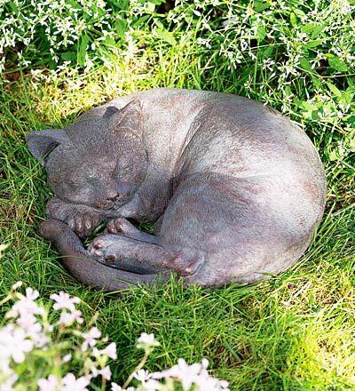 cat garden decor. 50472e.jpg (400×440) Cat Garden Decor N