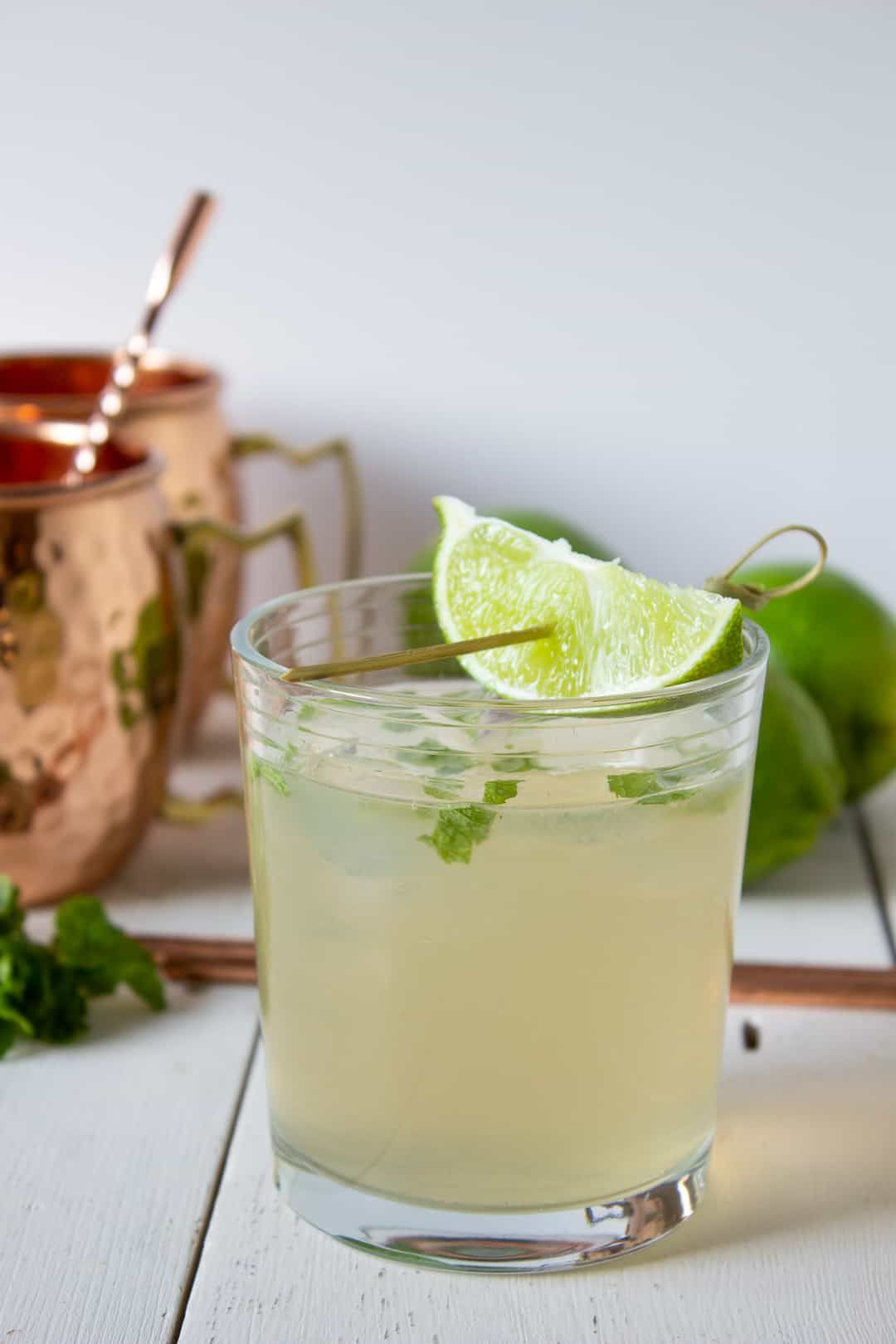 Moscow Mule Recipe Ginger Ale Drinks Ginger Ale Cocktail Vodka Lime