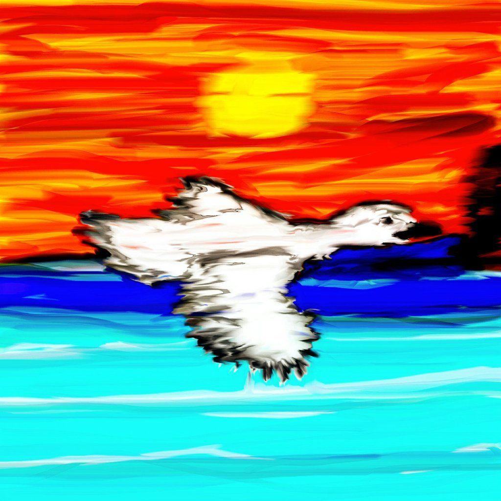 Migrating bird Bird migration, Birds, Why do birds