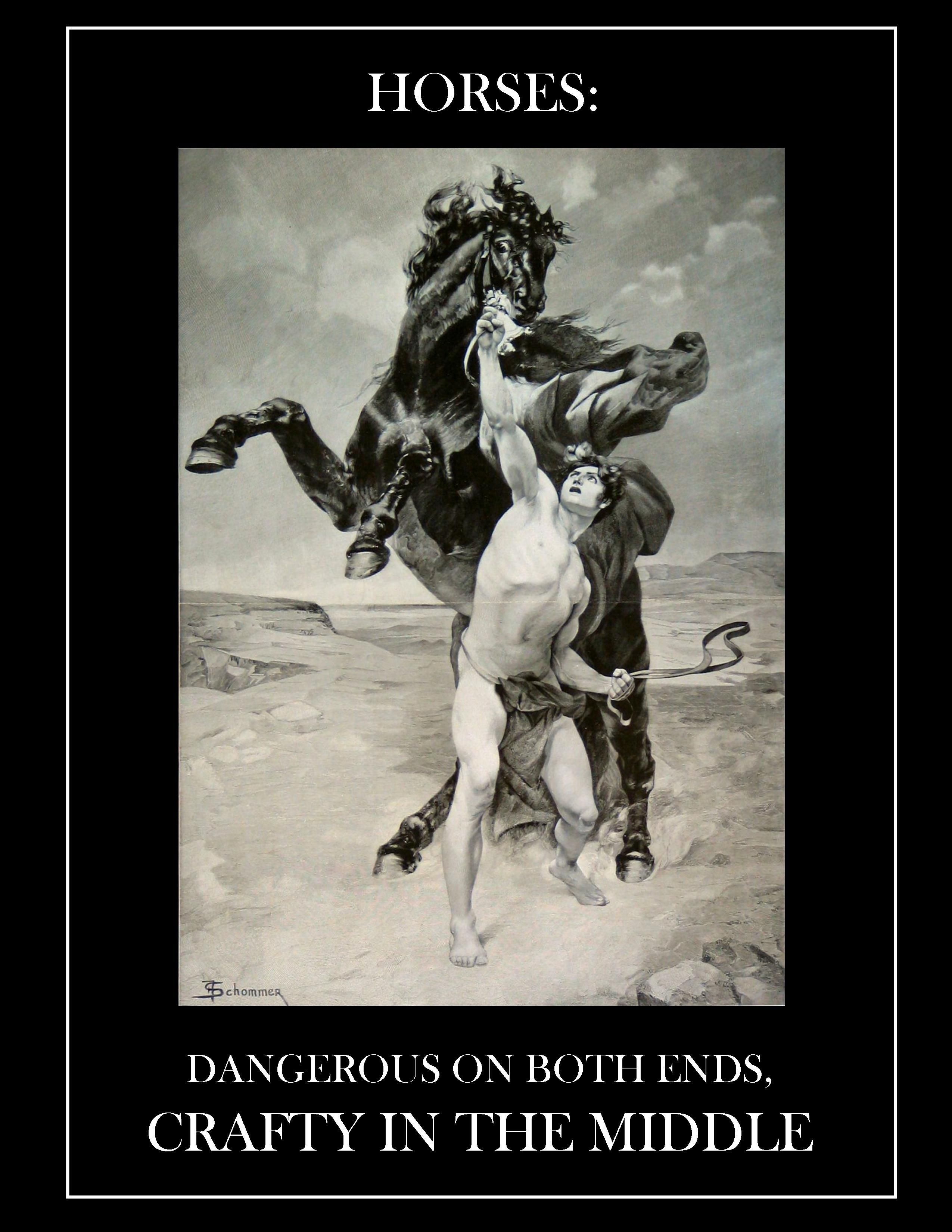 Horses: Dangerous on both ends, crafty in the middle | PETS: that
