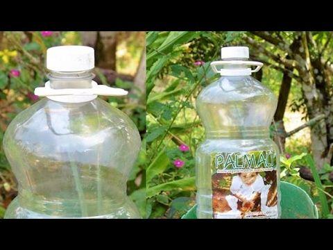 5 Trucos con Botellas de Plástico - YouTube