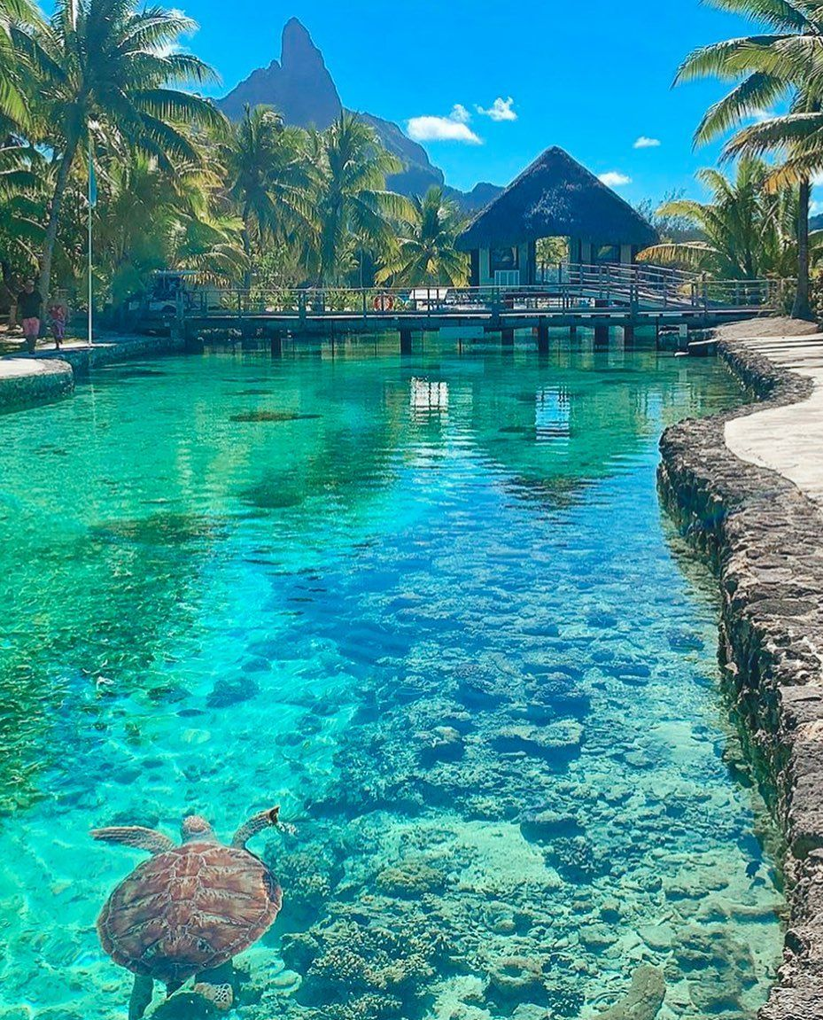 Bora Bora On Instagram Double Tap If You Love This Place Tag Someone You D Take Beautiful Places To Travel Vacation Places Cool Places To Visit