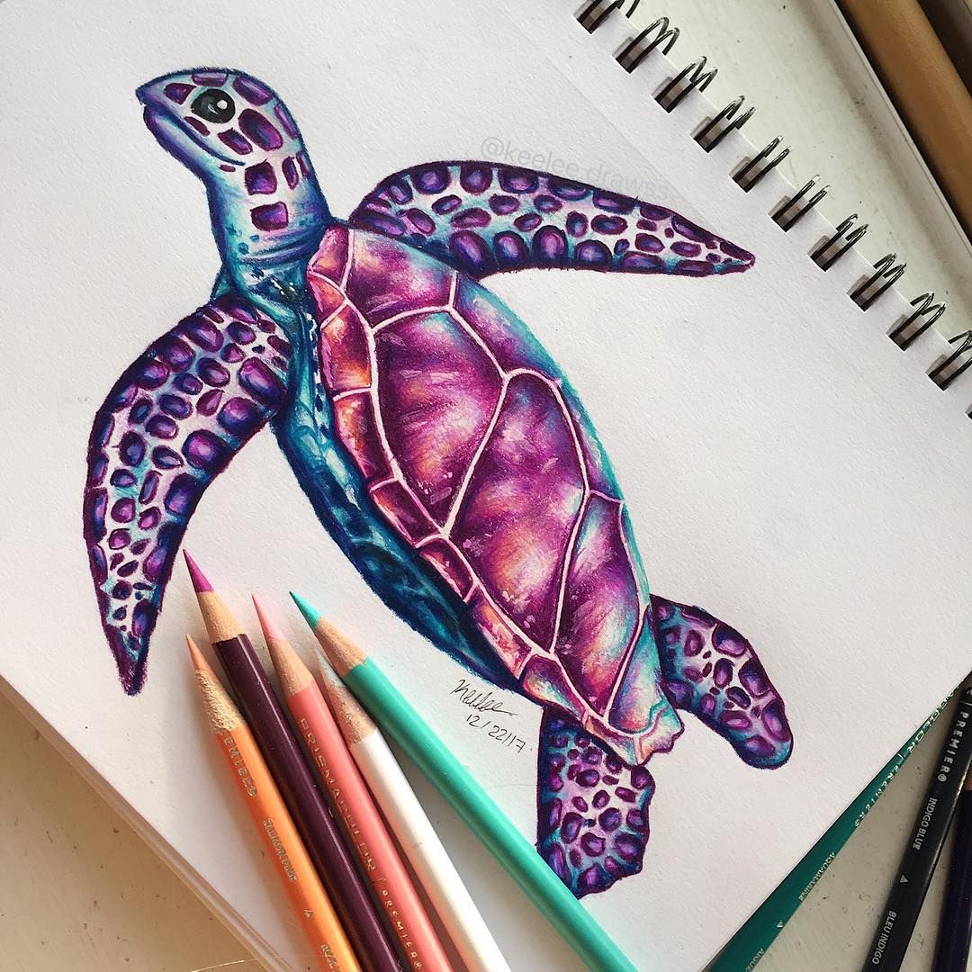 Hello Everyone Here S This Colorful Sea Turtle I Drew I Haven T Drawn One In A Few Months So This Wa Turtle Drawing Sea Turtle Drawing Colorful Drawings