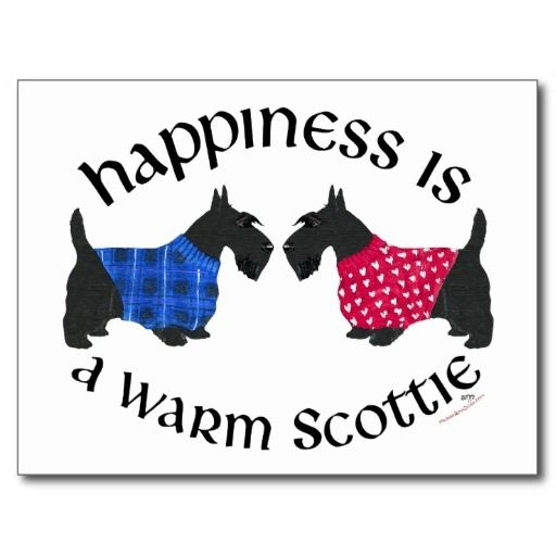Black Scottish Terriers Happiness Post Cards in each seller & make purchase online for cheap. Choose the best price and best promotion as you thing Secure Checkout you can trust Buy bestShopping          Black Scottish Terriers Happiness Post Cards please follow the link to see fully... by tozavel