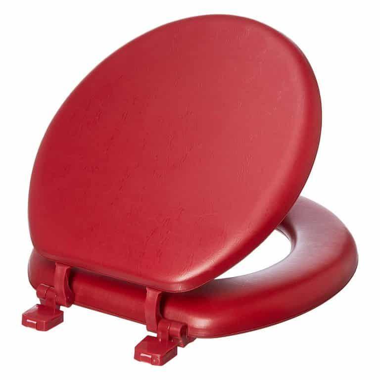 Astonishing Ginsey Standard Soft Toilet Seat Top 10 Best Padded Toilet Machost Co Dining Chair Design Ideas Machostcouk