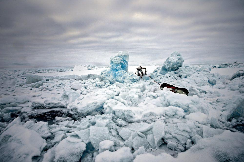 Polarödland