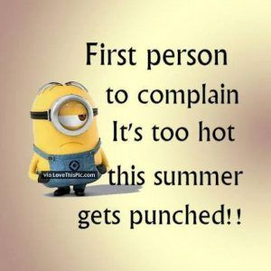 Funny Winter Quotes For Facebook Funny Memes Minions Quotes