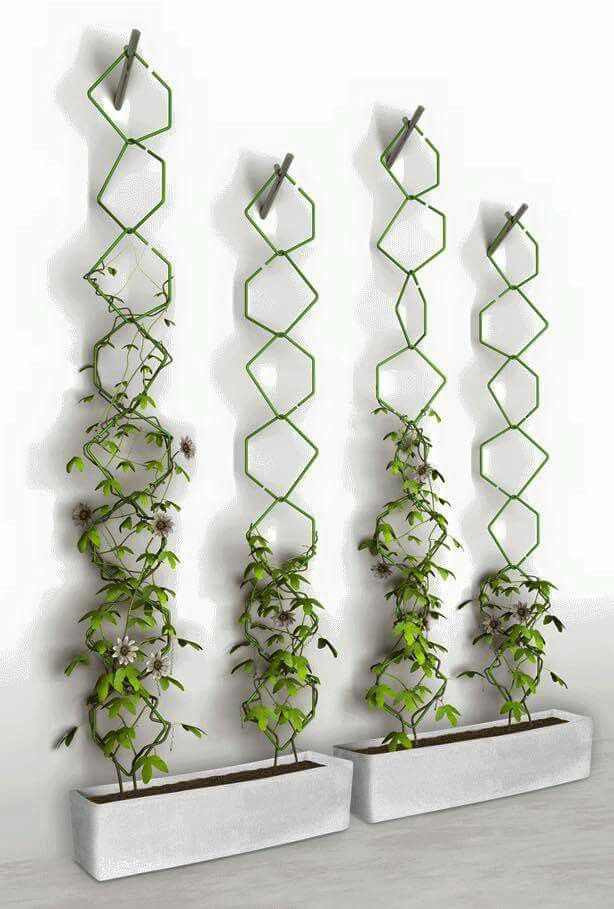 Indoor Hanging Garden Ideas Part - 50: Indoor Gardening